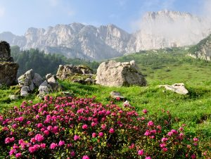 Piedmont, Cinque Terre, Aosta